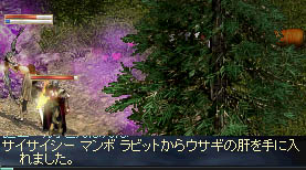 LinC3116_20080306s.jpg