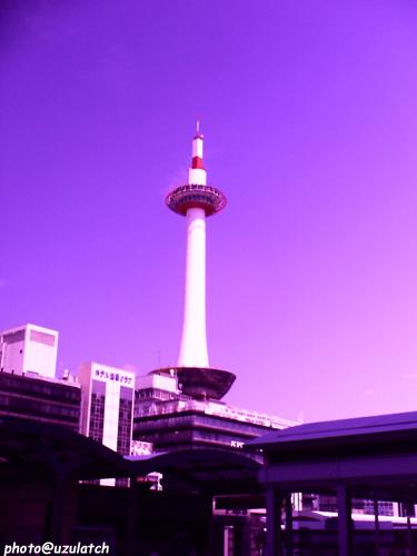 パープルタワー