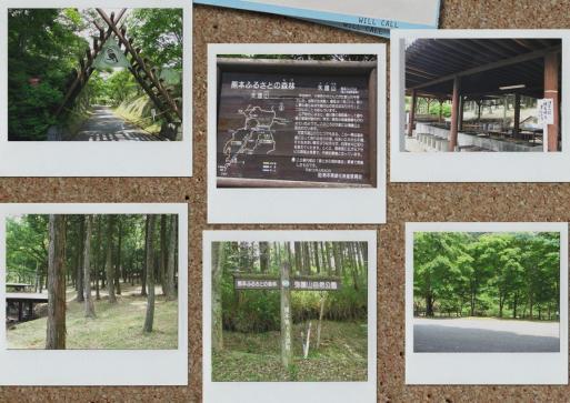矢護山自然公園内 キャンプ場1