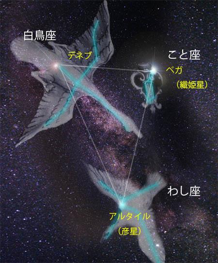 七夕星01