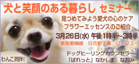 nacchi-hiyoshi.jpg
