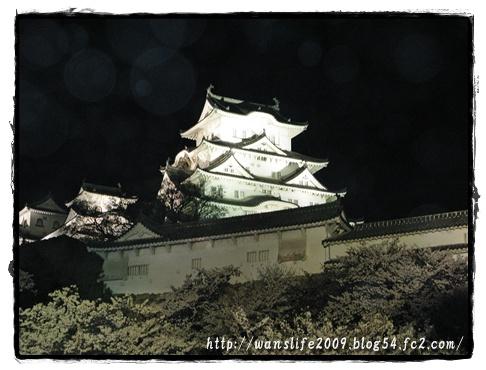 yozakura-16.jpg