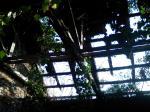 熊本塩務局塩倉庫(内部より屋根)