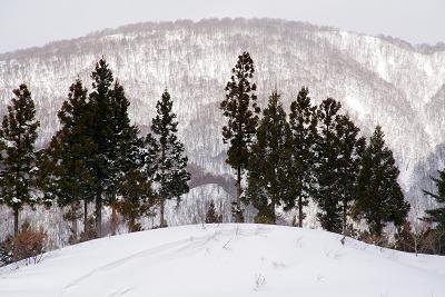 ski0006-009.jpg