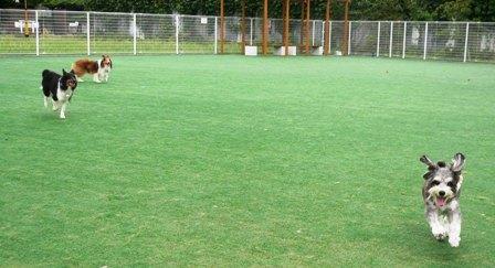 20080904-3.jpg