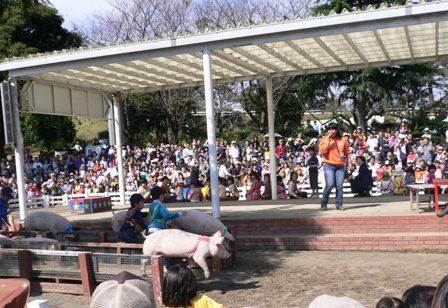 20081012-14.jpg
