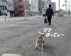 111127(14).jpg