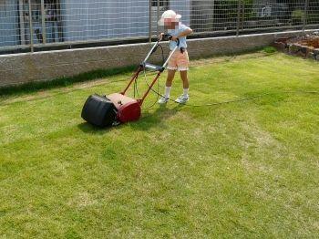 子供も刈れる