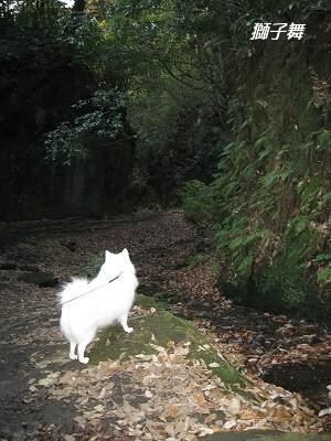 崖と小川の道