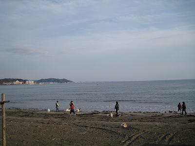 坂ノ下はHAL家のお庭です。
