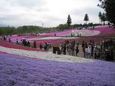 柴桜の丘Ⅰ