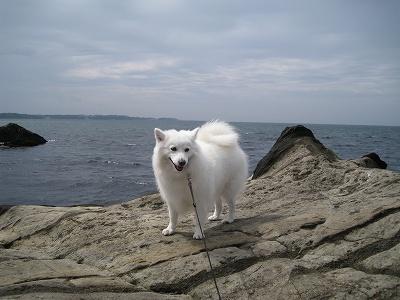 波の音がチト怖い。