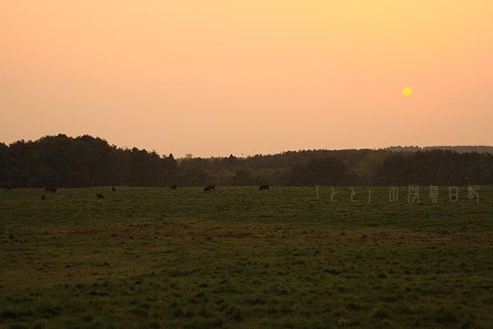 みつけた牧草地