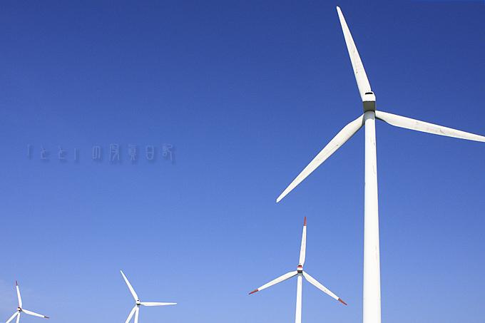 風力発電ろっかしょ