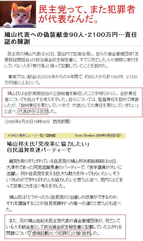 20090630MINSHUHANZAI1.jpg