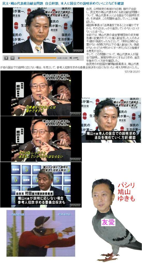 20090708HATOTUIKYU1.jpg