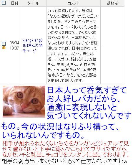 20090804bm1.jpg