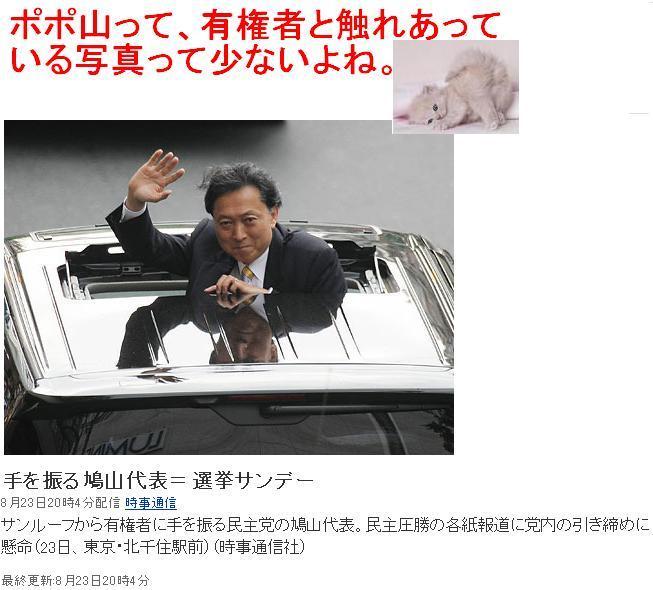 20090823hatoyaba1.jpg