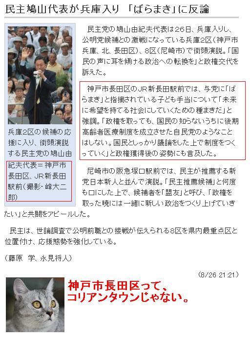 20090826hatoinnagata1.jpg
