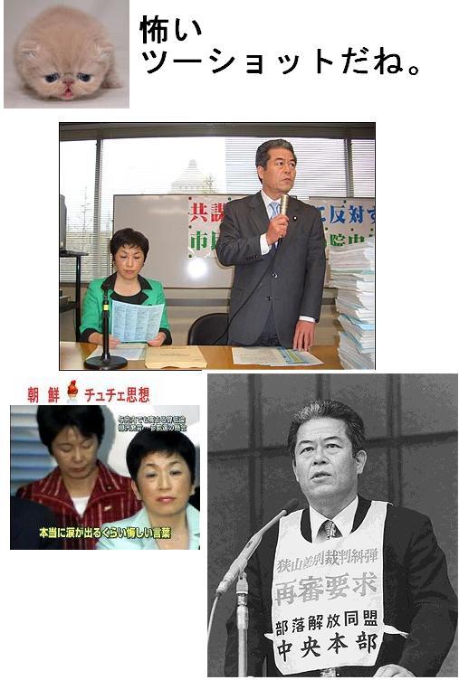 FUKUSHIMAMIZUPO2S.jpg
