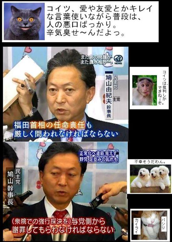 HATOYAMAFUKOUNAYATU1.jpg