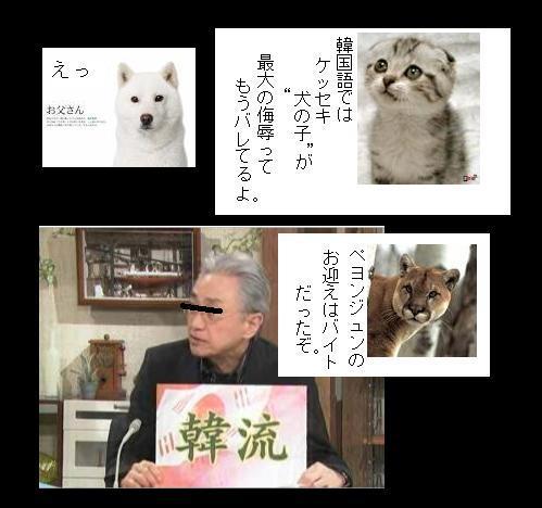 KOEANHANRIYU10.jpg