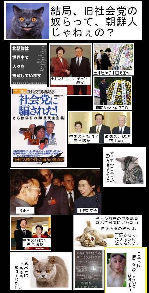 SHAKAITOCHONKOSAKUIN1.jpg
