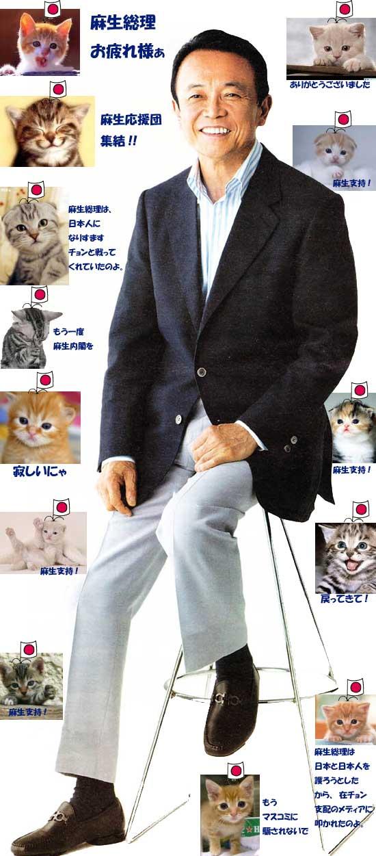 asoblogcats1.jpg