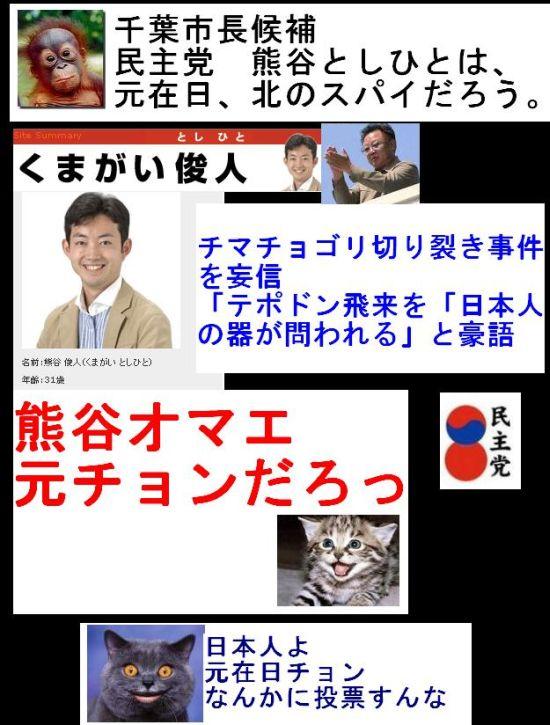 chibaminshumotochonkumagai1.jpg