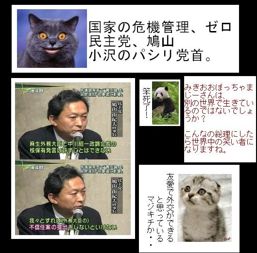 hatogiinnoshikakunashi1.jpg