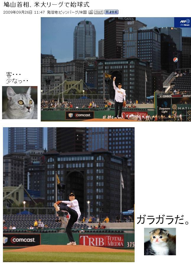 hatomeiyougeke2.jpg