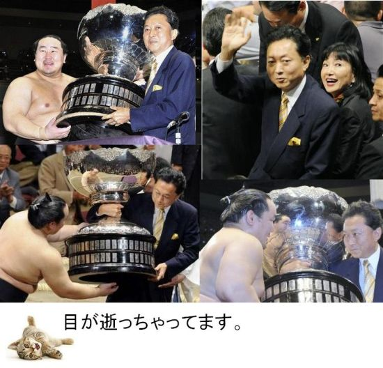 hatosumo2.jpg