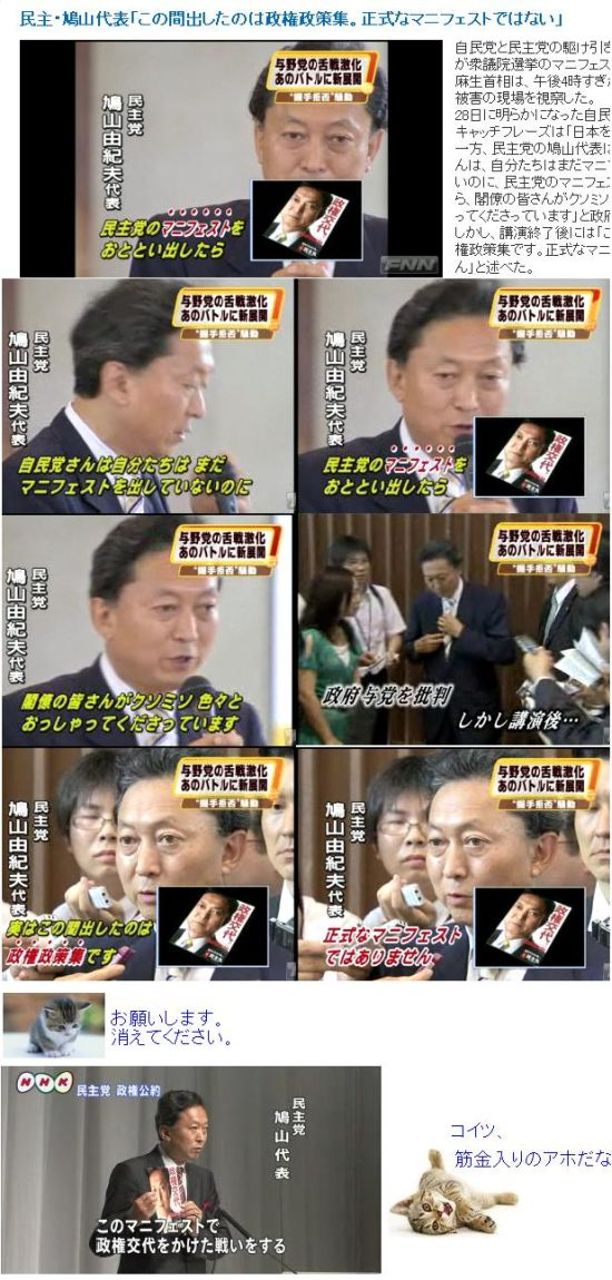 hatoyabayukimoma120090730.jpg