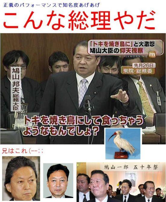 hatoyamakuniotokiku1.jpg