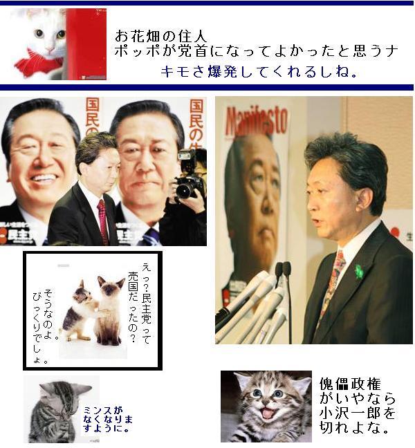 hatoyamaminshukmo1.jpg