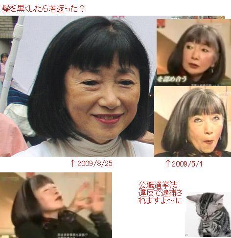 hatoyamamiyuki200908.jpg