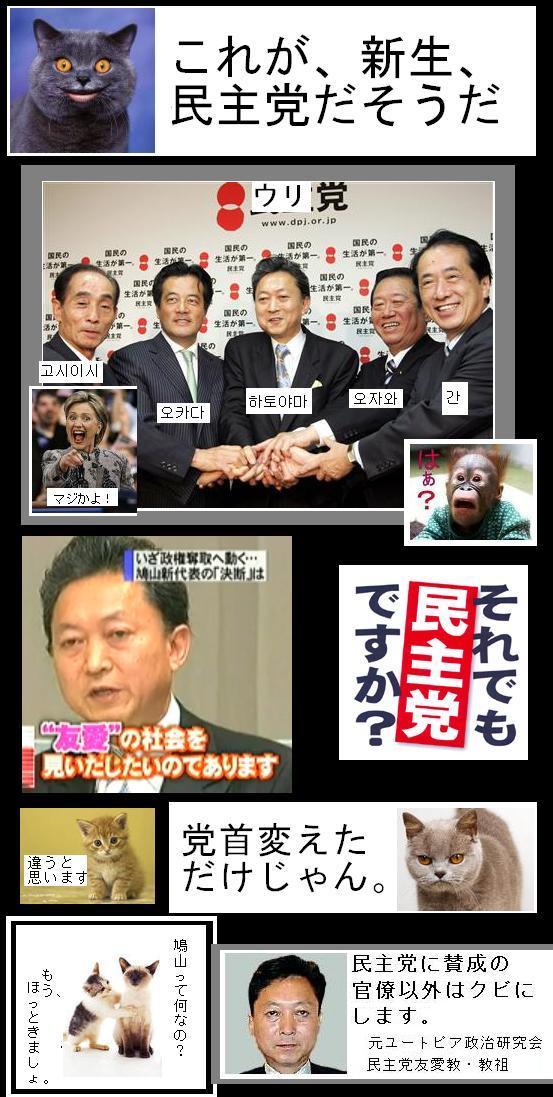hatoyamashinseiminshudayo1.jpg