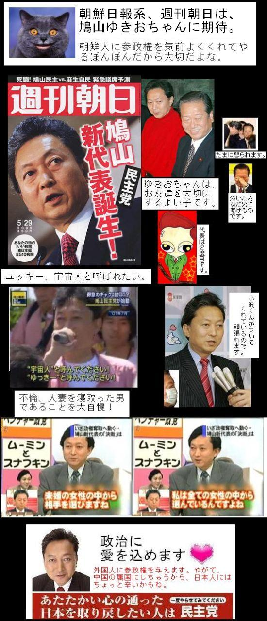 hatoyamayokioasahi1.jpg