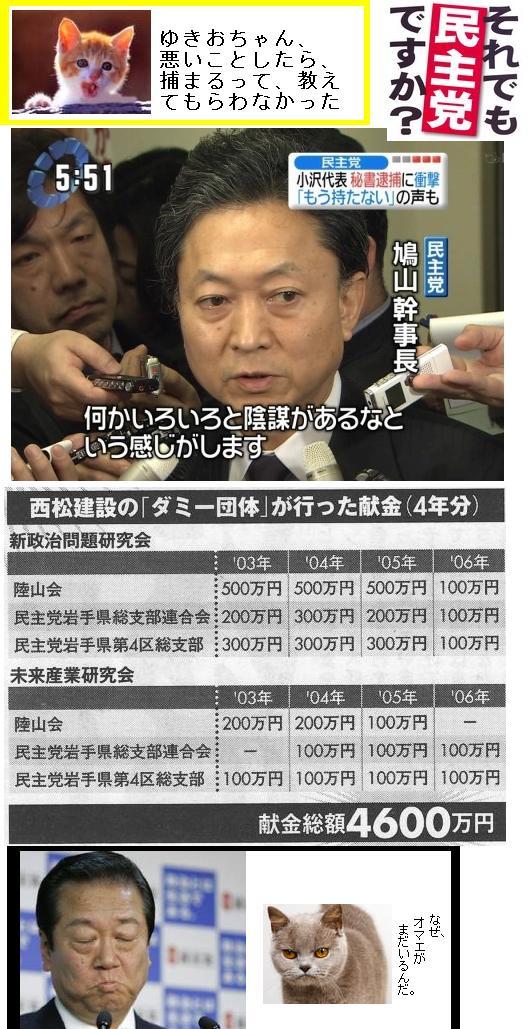 hatoyamayukiochan6.jpg