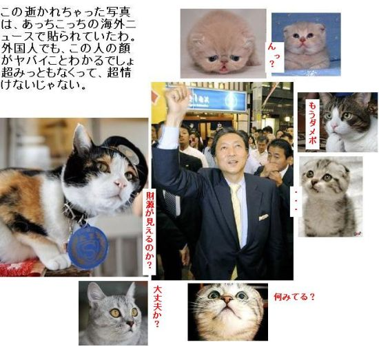 ikaretapopoyama001.jpg