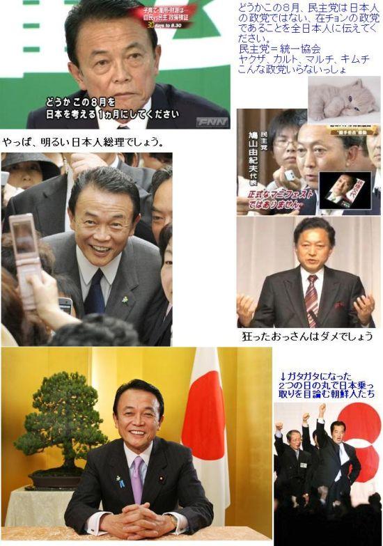 japanesevschonseitou200908.jpg