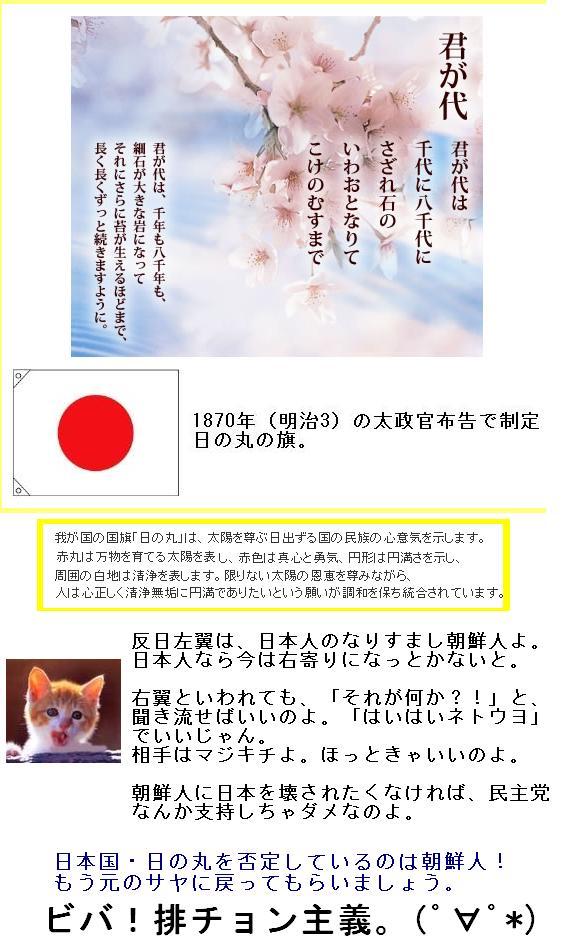 japanisnotkorea1.jpg