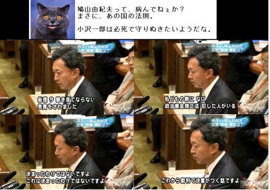 kimohatoyuaivsaso4.jpg