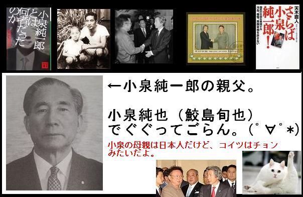 koizumijunichirouchon1.jpg