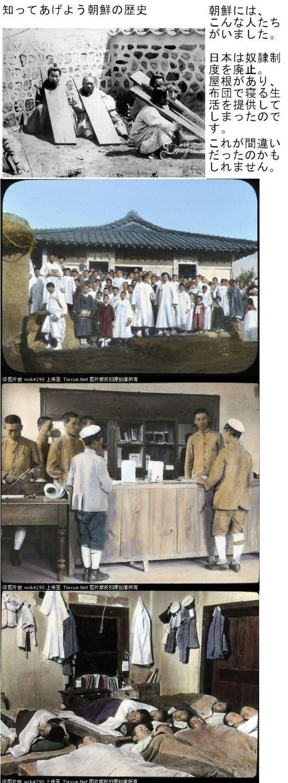 korea100yaneseikatu1.jpg