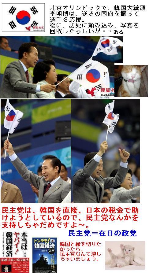 koreaflagfantaili1.jpg