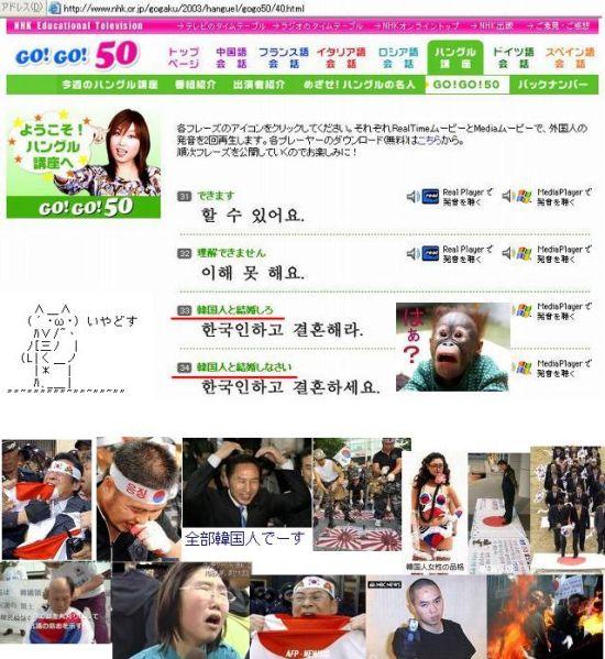 koreanmoiranaidesuyo.jpg