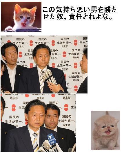 krupohatoyaba0902.jpg