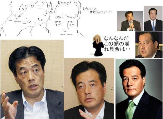 minokadakaoyabasugi1.jpg