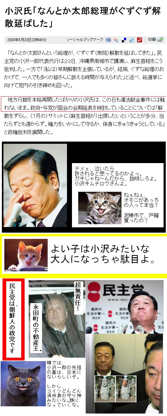 minshuozawanishimatutaihomae1.jpg